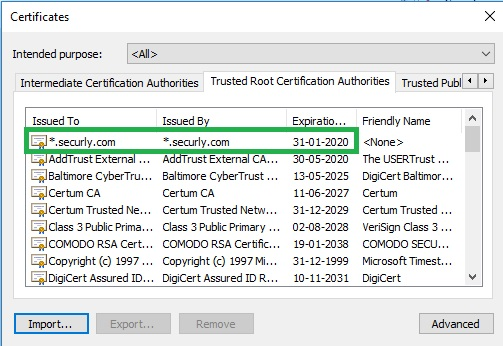 How to install Securly SSL certificate in Internet Explorer